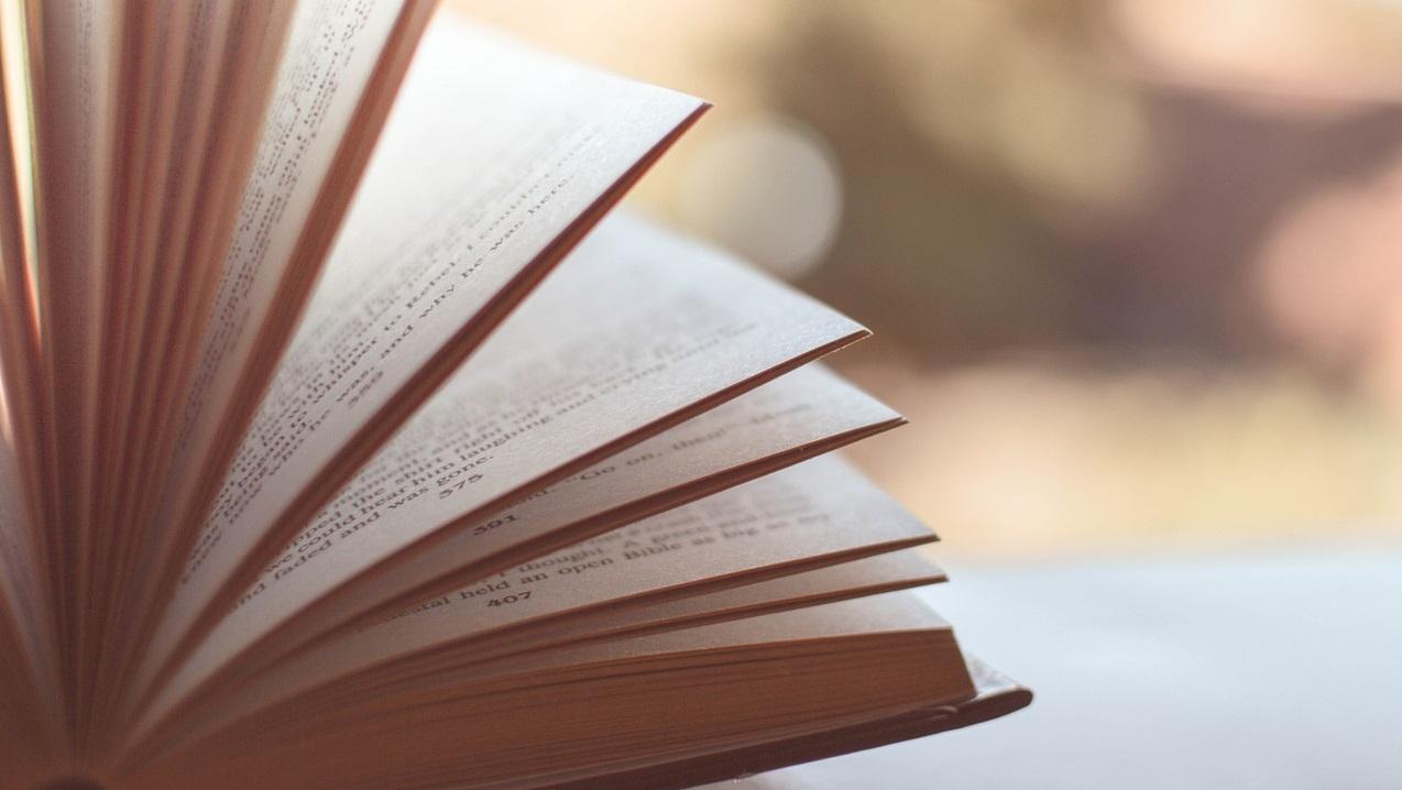 Dia do Livro: Maringá tem, pelo menos, 400 obras de autores maringaenses